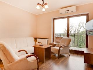 2 bedroom Apartment with Internet Access in Krakow - Krakow vacation rentals