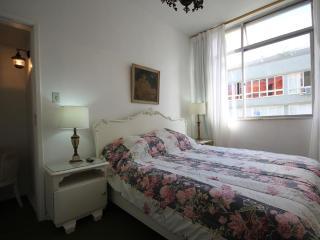 ★Canning 701★ - Rio de Janeiro vacation rentals