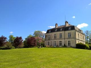 Spacious Castle with Internet Access and Outdoor Dining Area - Saint-Paul-Lizonne vacation rentals