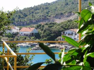 Bright Apartment in Dugi Otok with A/C, sleeps 3 - Dugi Otok vacation rentals