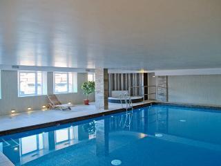 The Luxurious Penthouse (Peymans) - Cambridge vacation rentals