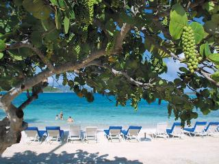Ritz- Carlton service beckons you on this pristine beachfront villa. MA RR2 - Tutu vacation rentals