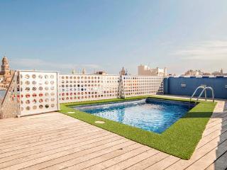 Wonderful Views & Pool in Málaga Historical Center - Malaga vacation rentals