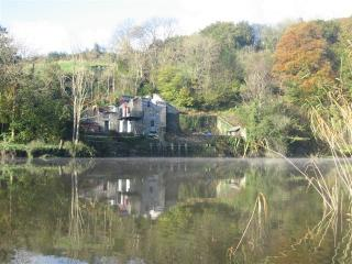 2 bedroom Boathouse with Television in Calstock - Calstock vacation rentals