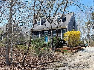 NATURALLY LIGHTED CAPE LOCATED ON A QUITE CUL-DE-SAC - Edgartown vacation rentals