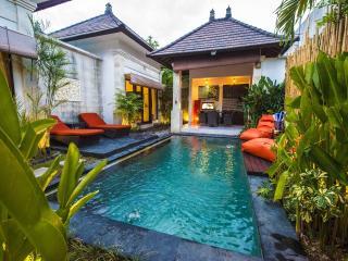 2 BR Lux Pool Villa Hidden Oasis near Seminyak - Seminyak vacation rentals