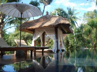 Paradise Beachfront Villa with Ocean View - Tejakula vacation rentals