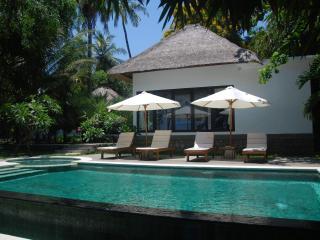 4BR Beachfron Villa at coral reef - Tejakula vacation rentals