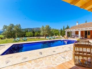 Finca Piolin: pool, garden and relax - Alcudia vacation rentals