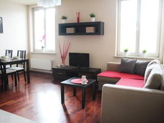 312 Luxory & Elegant Apartment - OLD CITY - Krakow vacation rentals