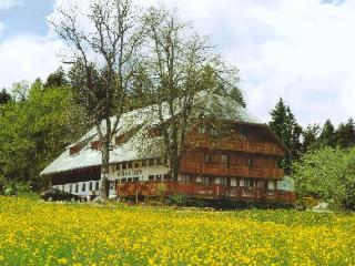 Guest Room in Triberg im Schwarzwald -  (# 7151) - Saint Georgen im Schwarzwald vacation rentals