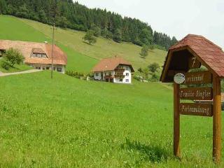 Vacation Apartment in Hofstetten (Baden) - 592 sqft,  (# 8470) - Biederbach vacation rentals