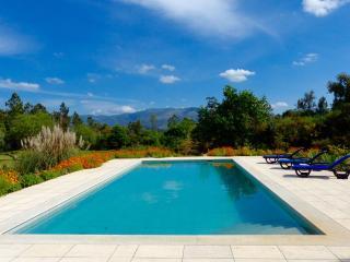 Luxury villa private pool Coimbra Arganil Tabua - Arganil vacation rentals