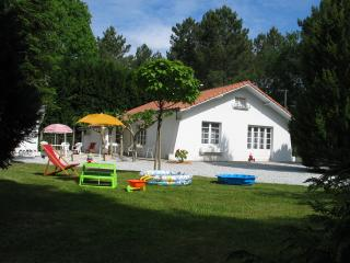 Nice House with Internet Access and Cleaning Service - Dax vacation rentals
