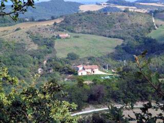apartments in Farmhouse near to San Venanzo - San Venanzo vacation rentals