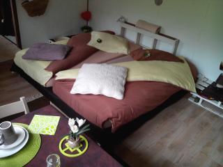 Une chambre StudiHôtel à BAR LE DUC - Bar-le-Duc vacation rentals