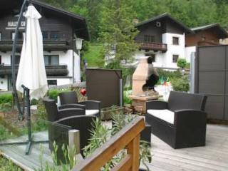 Ab auf die Piste Appartement - Zell am See vacation rentals