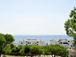 Nice sea view appartment - Estepona vacation rentals