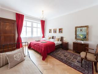 Vacation Rental in Vienna