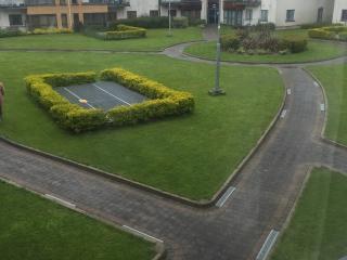 2 bedroom Condo with Internet Access in Dublin - Dublin vacation rentals