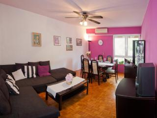 Charming and Comfort Downtown Apartment - Split vacation rentals