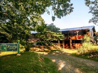 100-acre Country Estate;Rustic Lodge,River,Creek - Blue Ridge vacation rentals