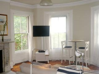 Boutique South End with sunshine - Boston vacation rentals