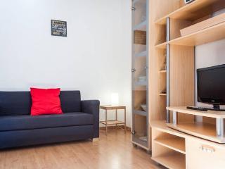 beau 2 pièces 35 m² calme, plein centre Strasbourg - Strasbourg vacation rentals