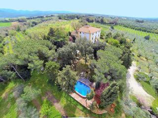 Agriturismo Il Palazzino - Bibbona vacation rentals