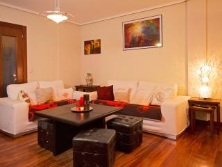 Spacious 3 rooms. WIFI free. - Castro Urdiales vacation rentals