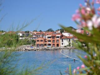 Tepus(712-1411) - Vantacici vacation rentals