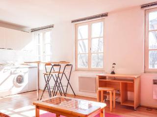 Beau 2 pièces de 34 m² plein centre - Strasbourg vacation rentals