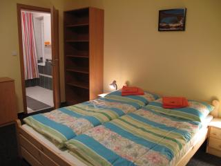 Nice Guest house with Internet Access and Wireless Internet - Pribram vacation rentals