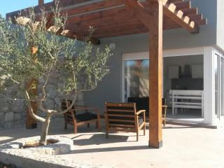 Villa Oliva Duplex - Novalja vacation rentals
