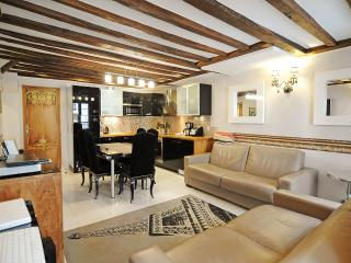 A Taste of Paris - Gorgeous Apartment Condo - Paris vacation rentals