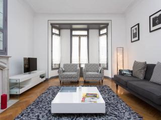 Cannes /Large elegant 3 bed apart plus terrace - Cannes vacation rentals
