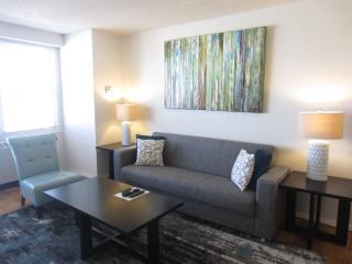 Lux Longwood 1BR w/pool, gym & WiFi - Boston vacation rentals