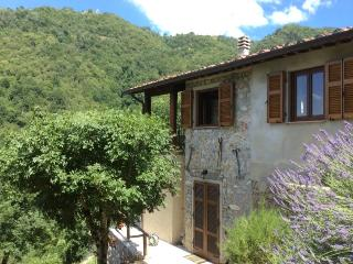 Charming 3 bedroom Villa in Fosciandora - Fosciandora vacation rentals