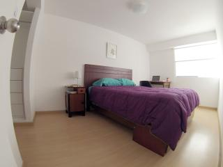 Luxury Double Room Miraflores BEST LOCATION!! - Lima vacation rentals