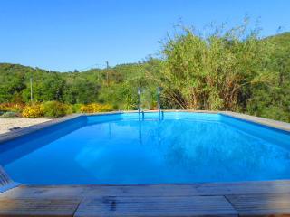 Très beau Mas avec sa piscine privée - Grimaud vacation rentals