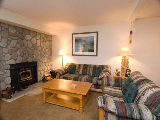 #539 Golden Creek Road - Mammoth Lakes vacation rentals