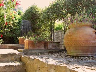 Olive tree house with sea view! - Castiglione Della Pescaia vacation rentals