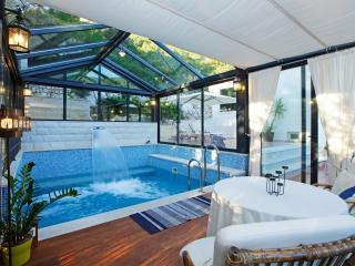 Villa Lastovo - Pasadur vacation rentals