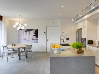 luxurious apartment, Perfect Locaition - Tel Aviv vacation rentals