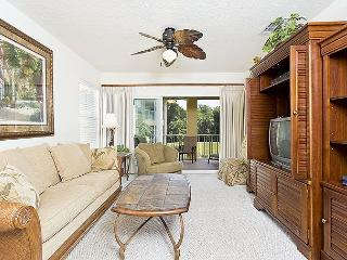 Canopy Walk 1121, Gated, End Unit, 3 bedrooms,wifi, pool, spa, fitness room - Palm Coast vacation rentals