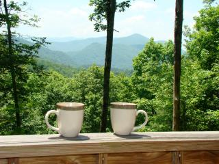 Romantic House with Mountain Views and DVD Player - Topton vacation rentals
