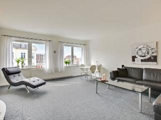 Cozy Copenhagen apartment near cafes and shopping - Copenhagen vacation rentals