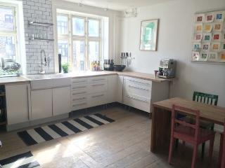 Designer Copenhagen apartment in nice neighborhood - Copenhagen vacation rentals