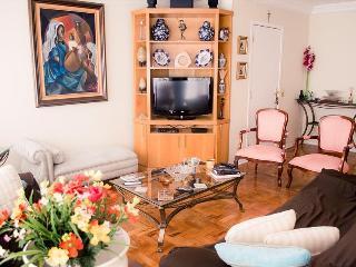 Comfortable 4 bedroom Condo in Diadema - Diadema vacation rentals