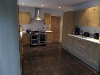 Detached  house suitable for large family/groups - Aberdare vacation rentals